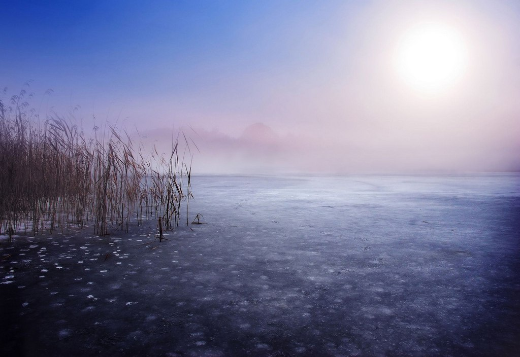 Установившийся лед отрезал путь к берегу рыбакам в Устюженском районе