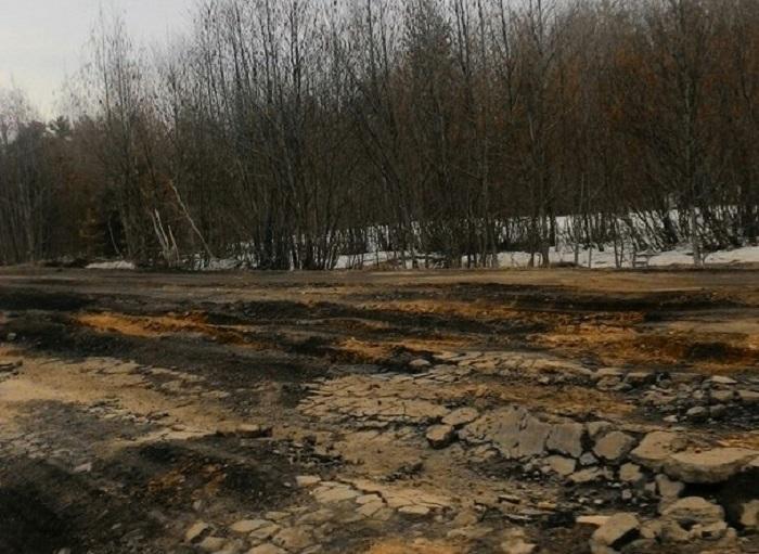 Вологодская область вошла в список регионов с критическим состоянием дорог