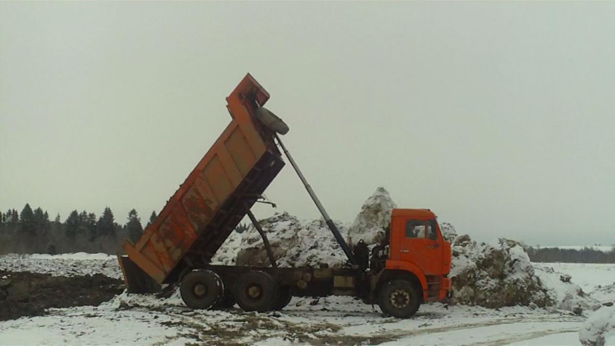 Ущерб, причиненный реке Тошне строителями поселка «Сосновый берег», оценивается в миллион рублей