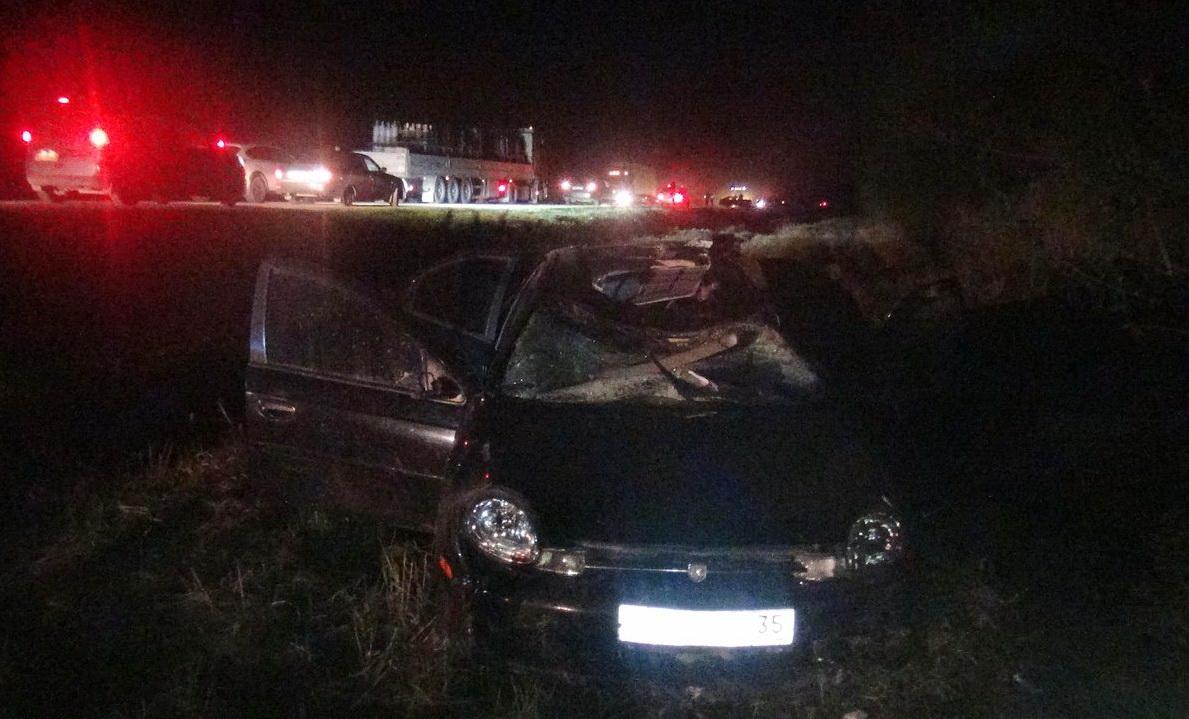 В Череповецком районе из-за выбежавшего на дорогу лося погиб водитель