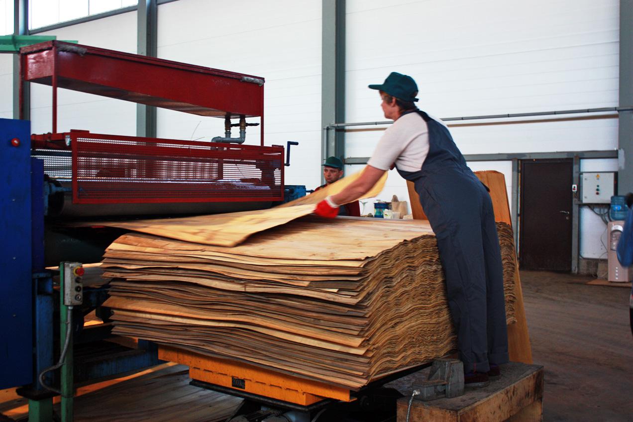 В Соколе заработал фанерный завод