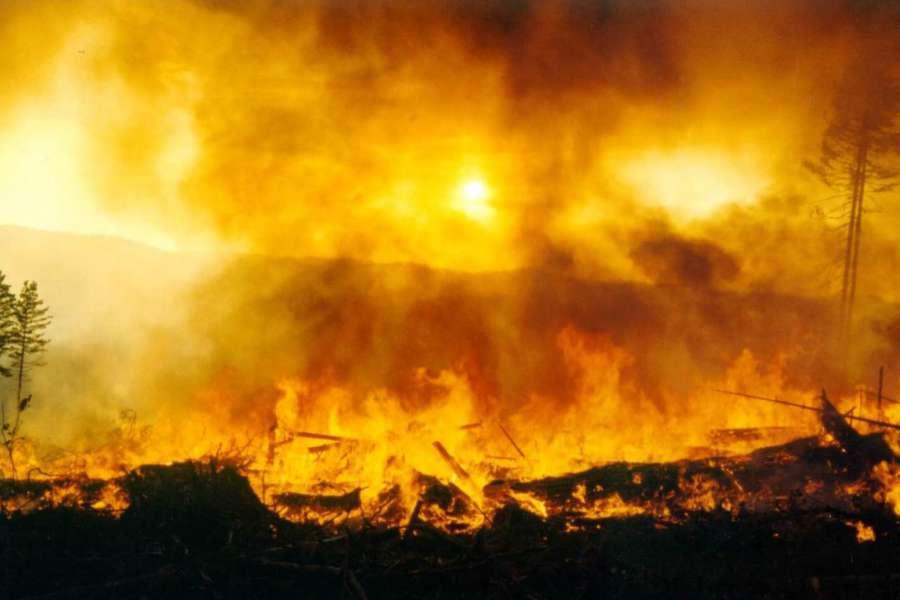 В Бабаево школьники бросили непотушенные окурки на складе: здание полностью сгорело