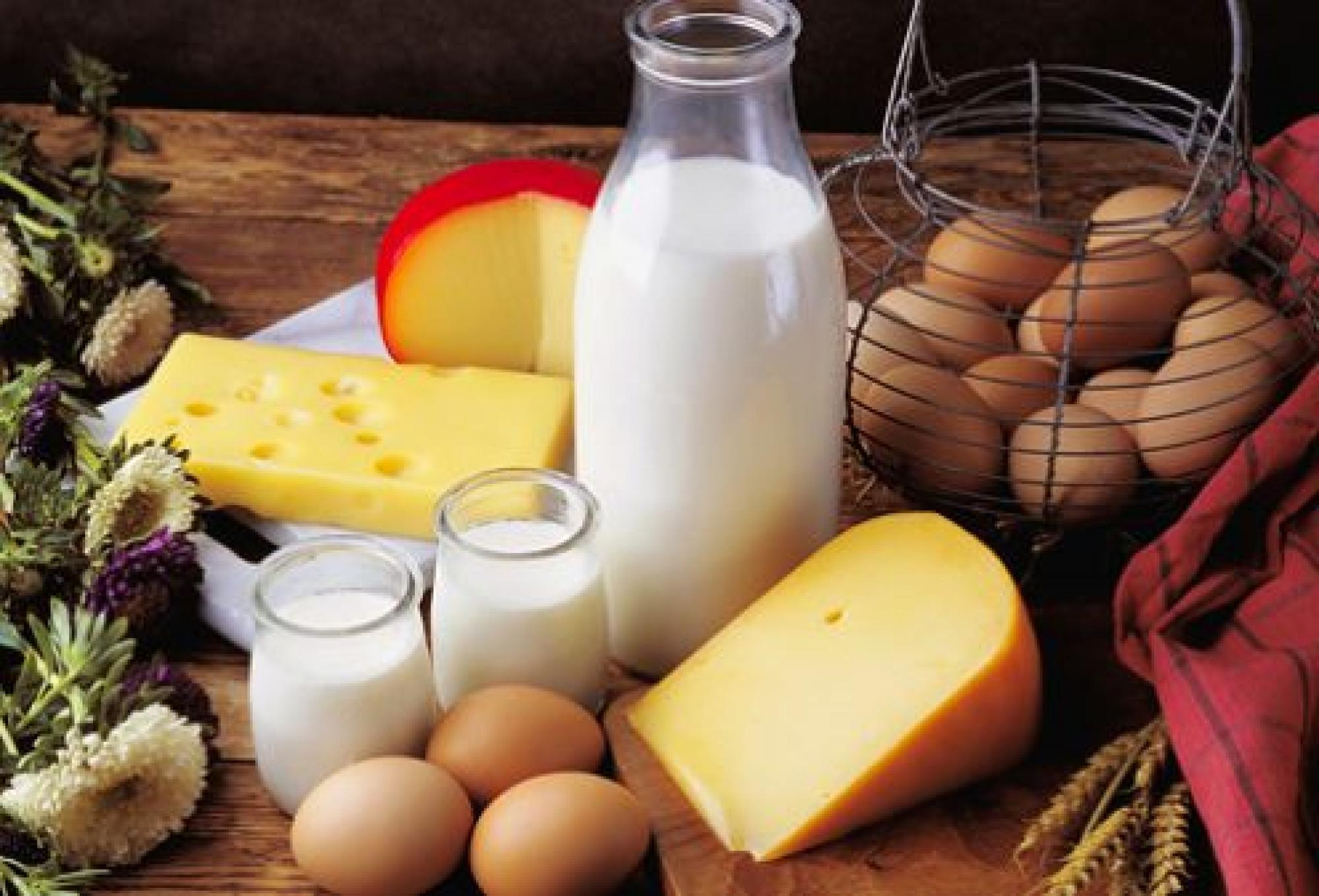 Курс еды: сравниваем цены в супермаркетах Вологды (2-9 февраля)