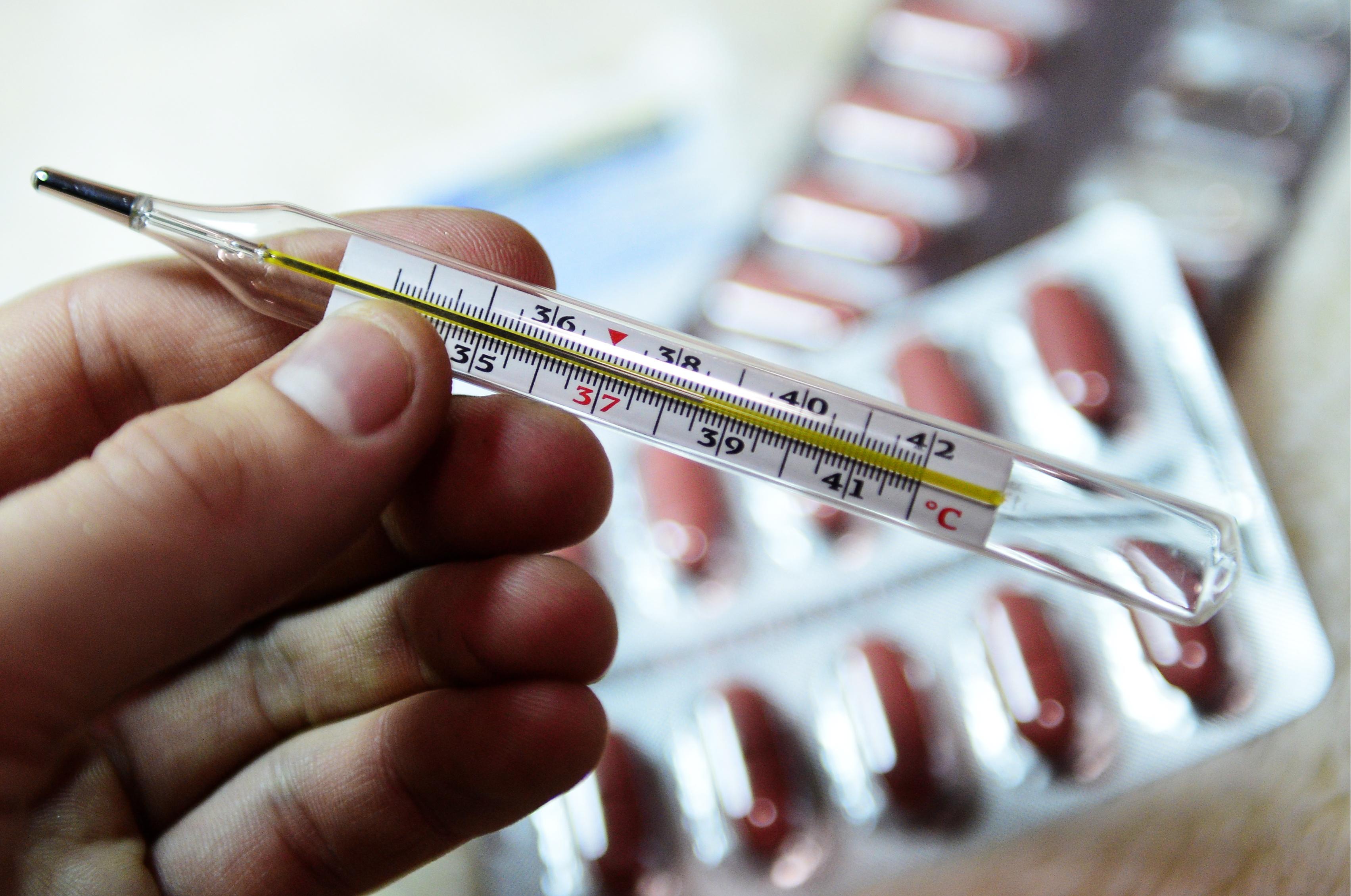 """В больнице Череповца от """"свиного гриппа"""" умер ребенок из Бабаевского района"""