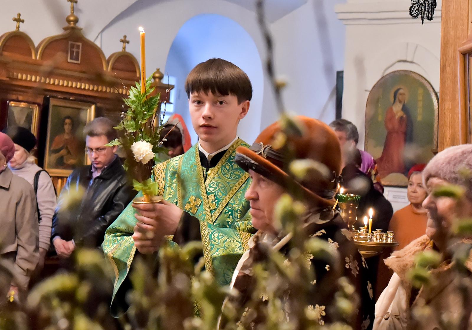 5 тонн вербы отправили из Вологодской области в Москву