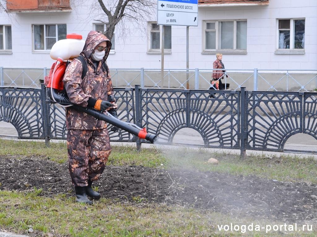 В Вологде начали обрабатывать парки и скверы от клещей