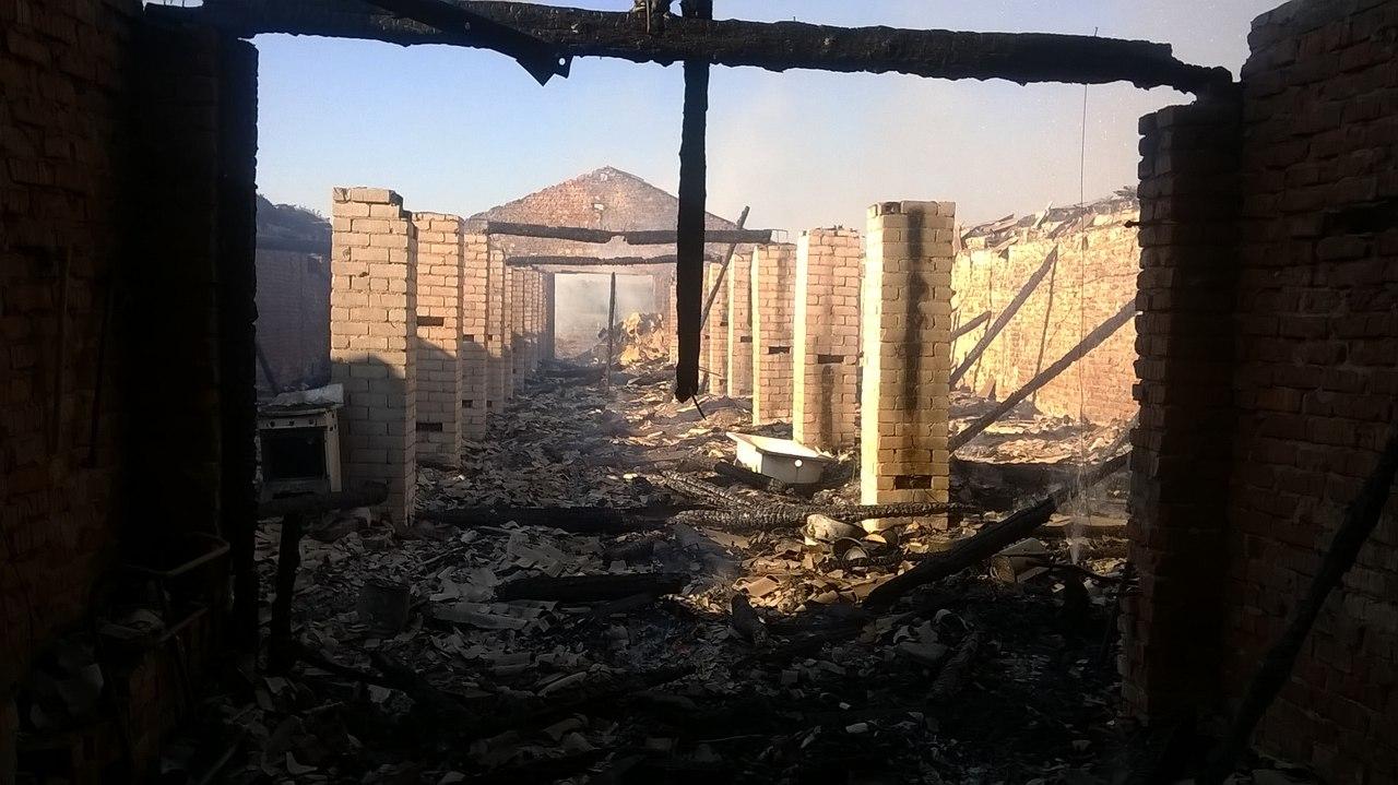 120 поросят погибли во время пожара на ферме в Тотемском районе
