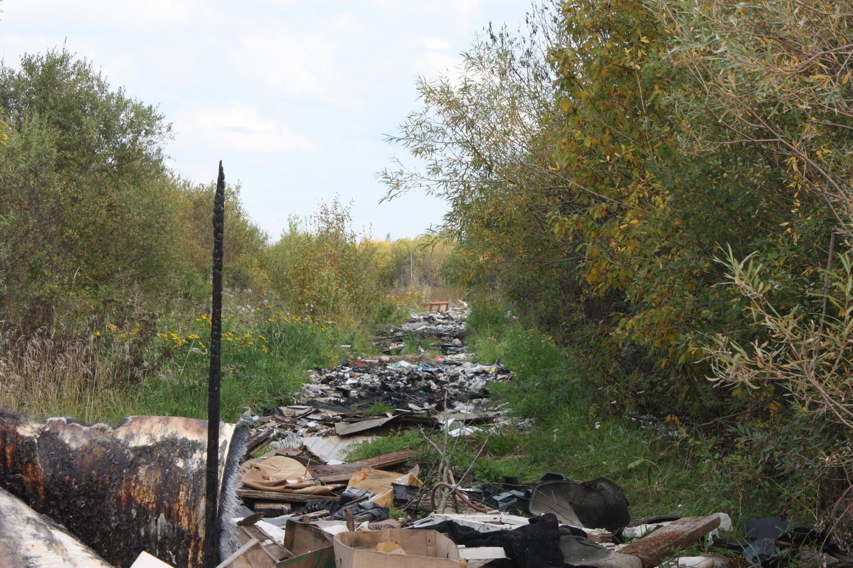 Несанкционированную свалку возле парка Мира ликвидируют за счет бюджета