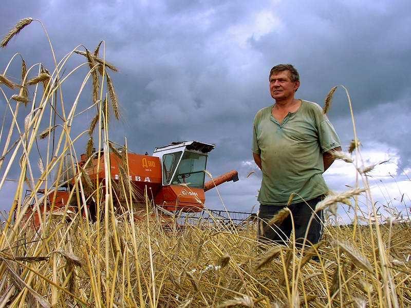Вологодским фермерам выдадут больше 11 миллионов рублей
