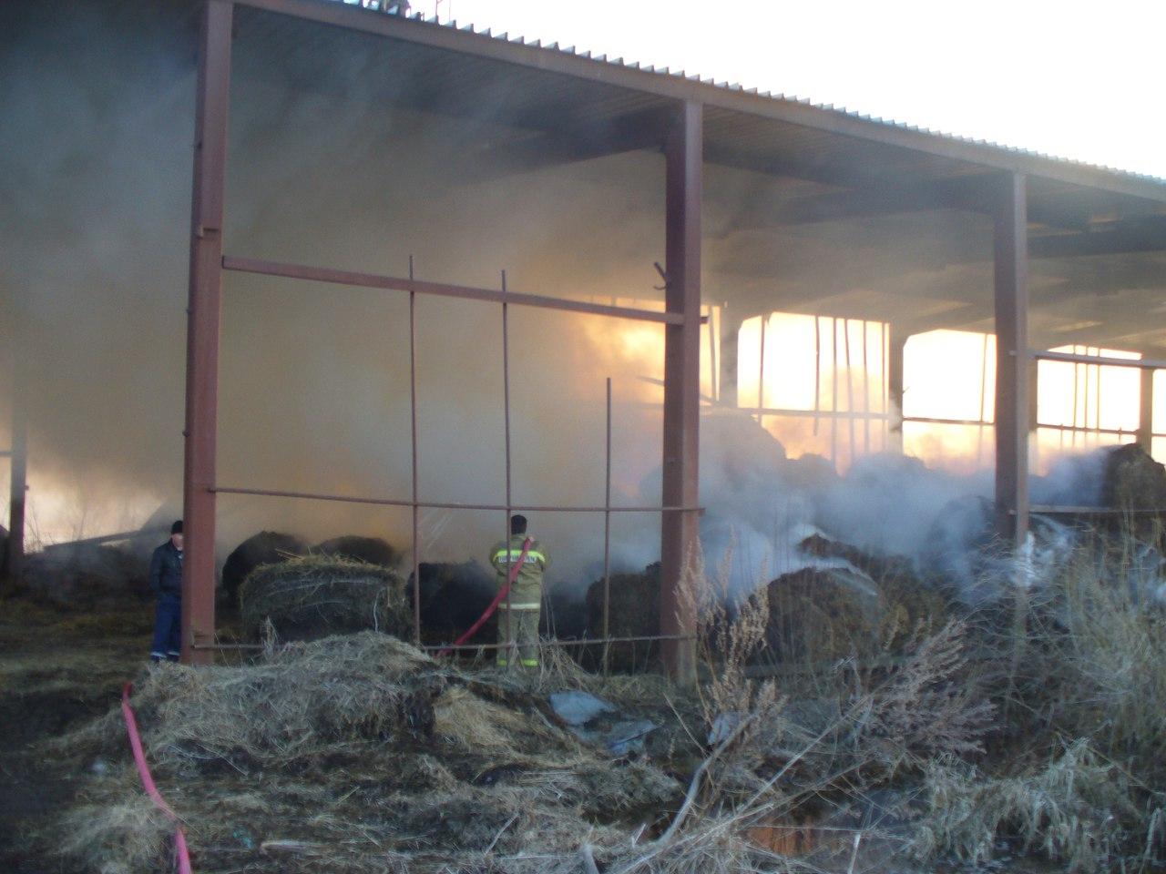 В Вологодском районе из-за детской шалости сгорело более 30 тонн сена