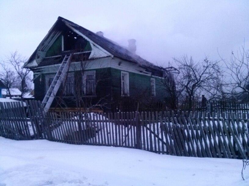 Козы, курицы и гуси погибли во время пожара в Соколе