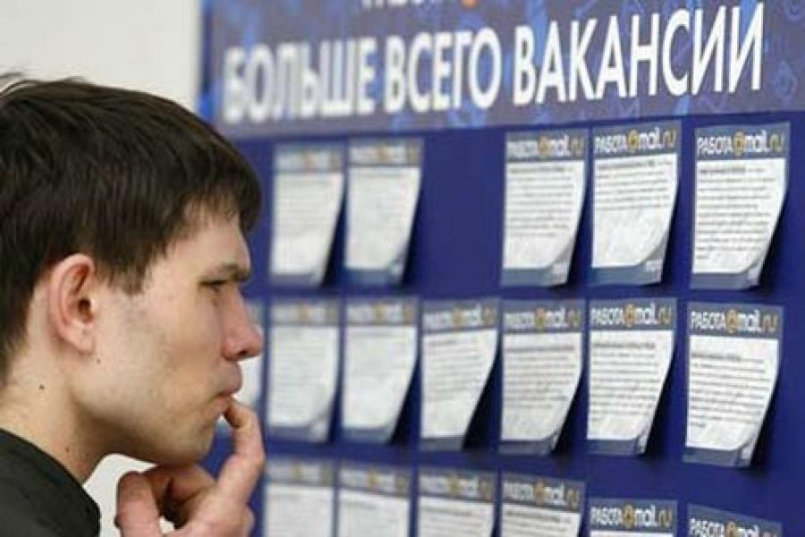 За год количество безработных в Вологодской области увеличилось на 20%