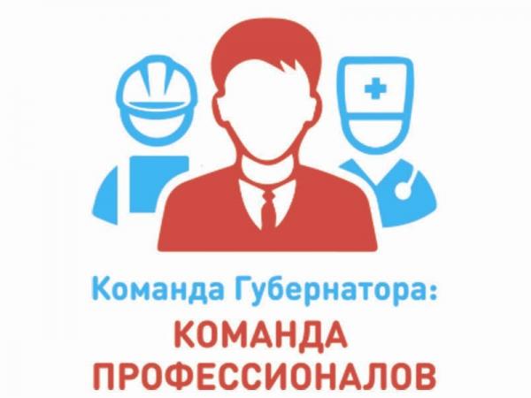 «Команду профессионалов» выбирают вологжане на сайте губернатора