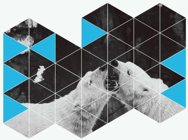Tele2 приглашает на благотворительную фотовыставку «150 зим»