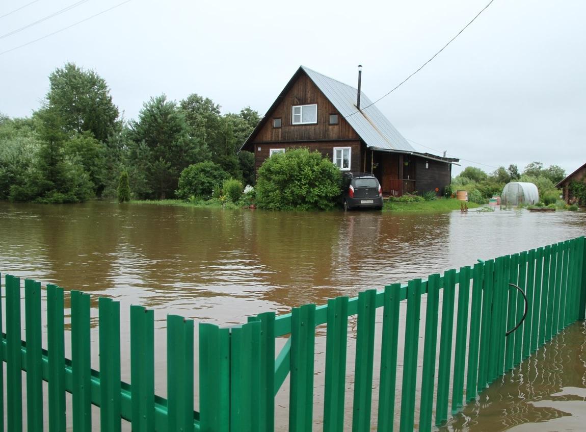 В Грязовецком районе часть деревни затопило из-за бобров