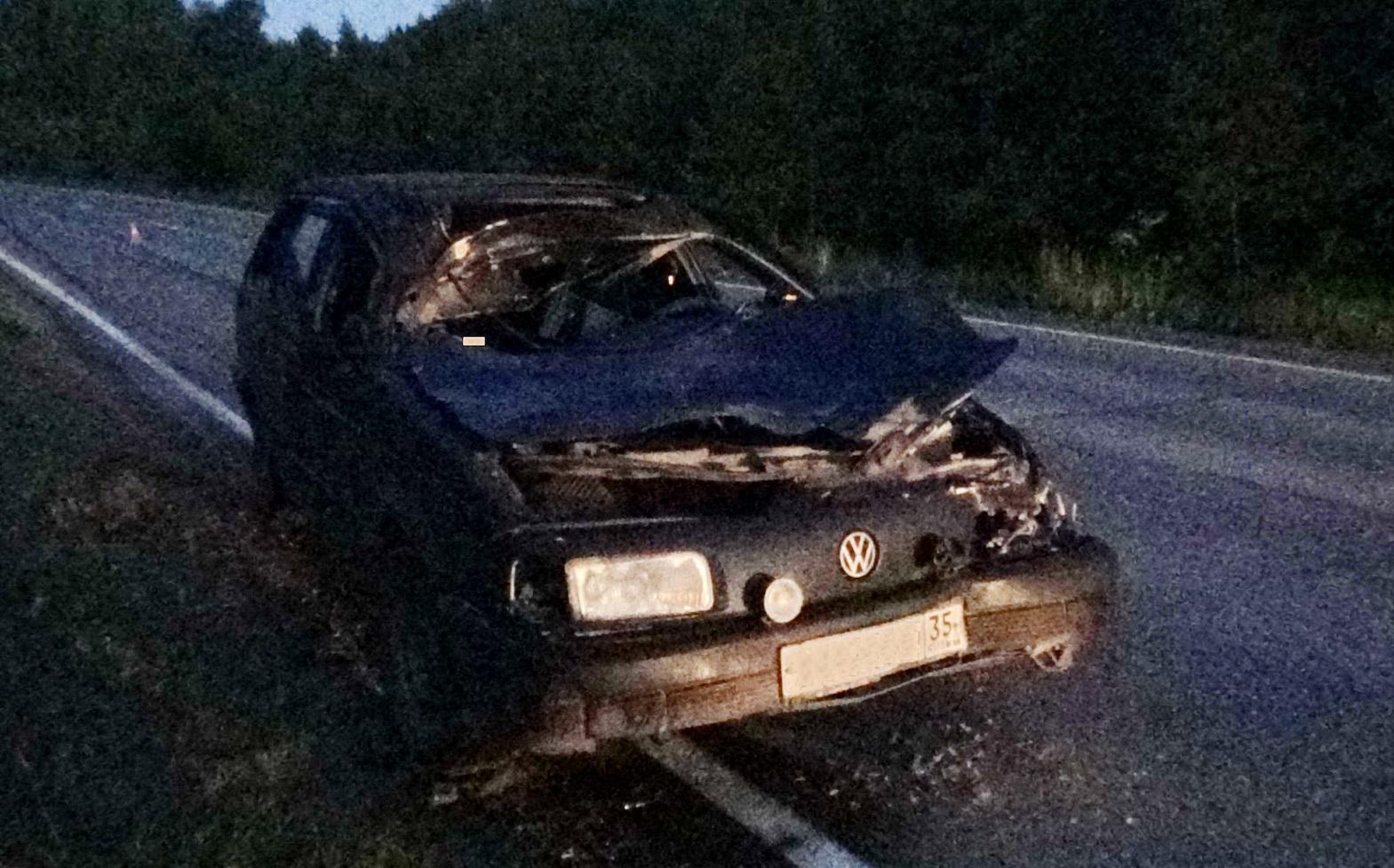 В ДТП в Череповецком районе погиб лось и пострадали два человека