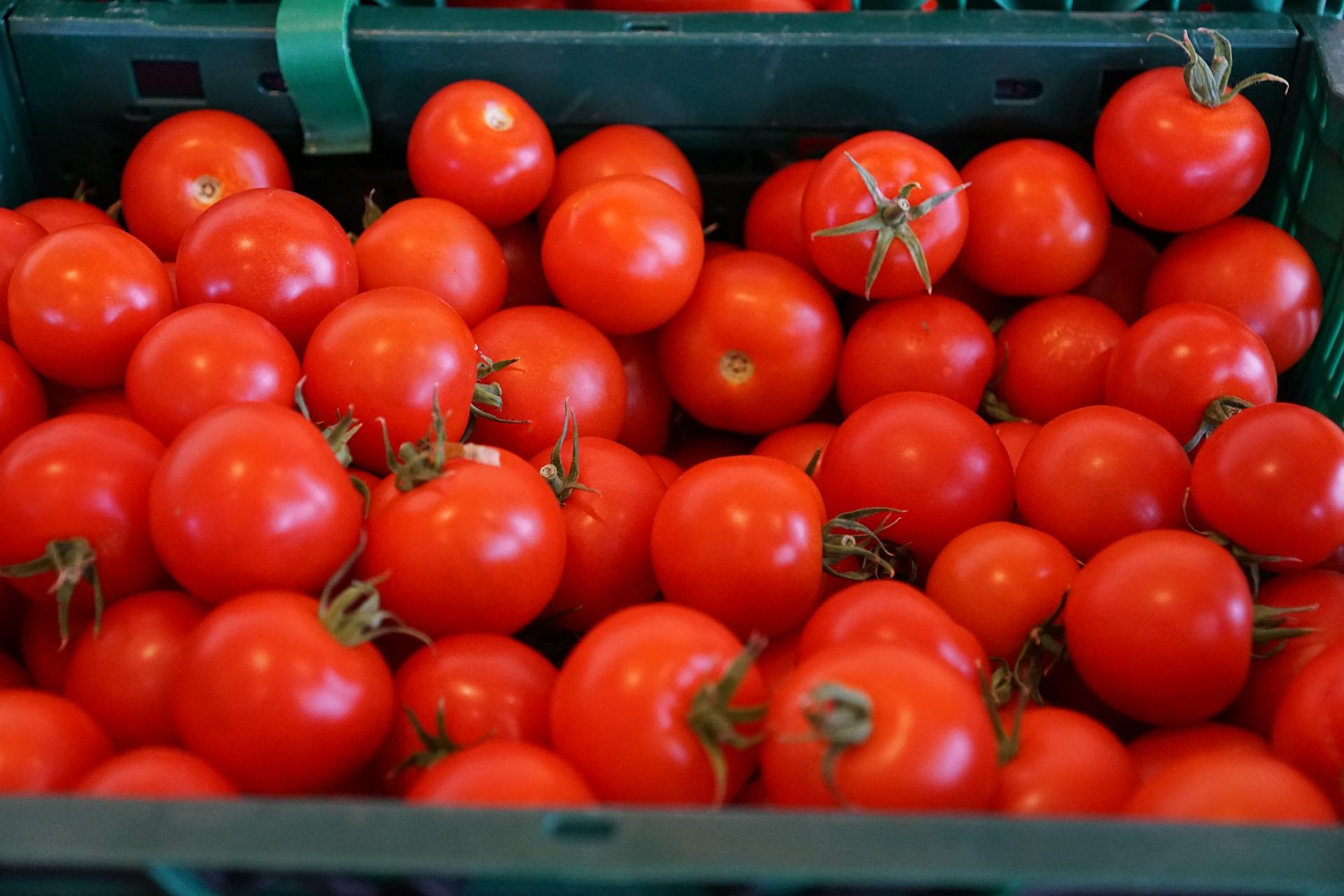 Череповец займется импортозамещением турецких овощей