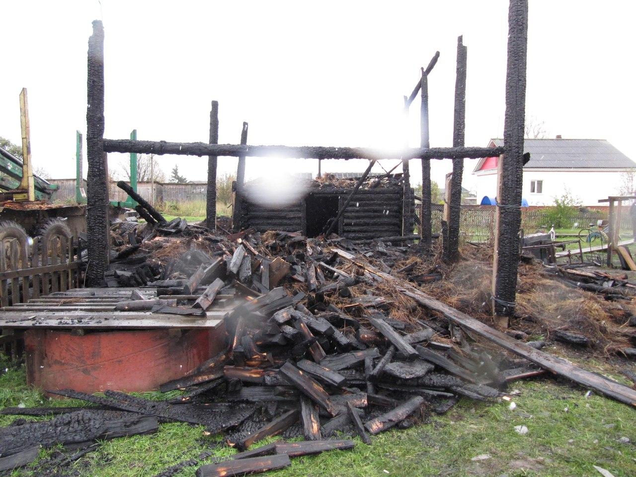 Два поросенка и шесть куриц погибли в огне в Усть-Кубинском районе