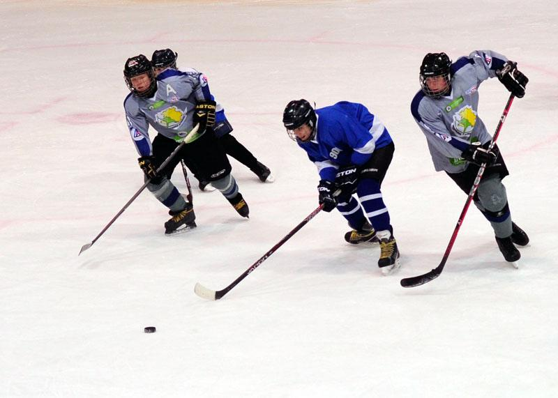 """Юные вологодские хоккеисты отправятся на всероссийский турнир """"Золотая шайба""""."""