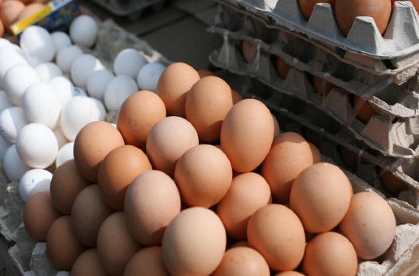 Сотрудник птицефабрики в Ермаково пытался украсть на работе 720 яиц