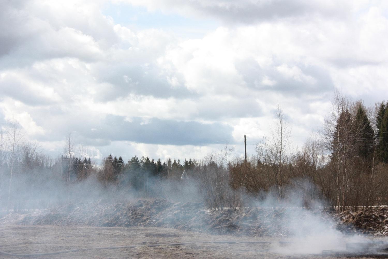 Из-за подожженого мусора в Вологодской области сгорели несколько дач, сараи и баня
