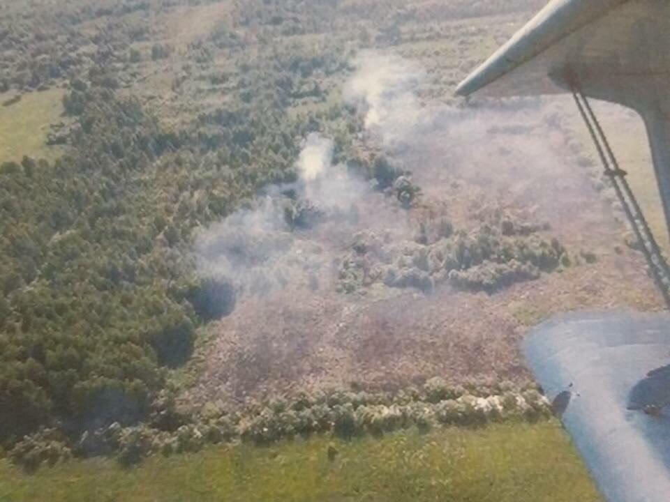Под Вологдой горит около 10 гектаров торфа