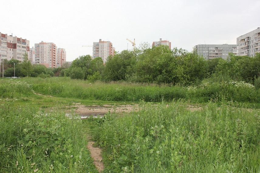 Жители Вологды собирают подписи за увеличение площади парков и скверов в городе