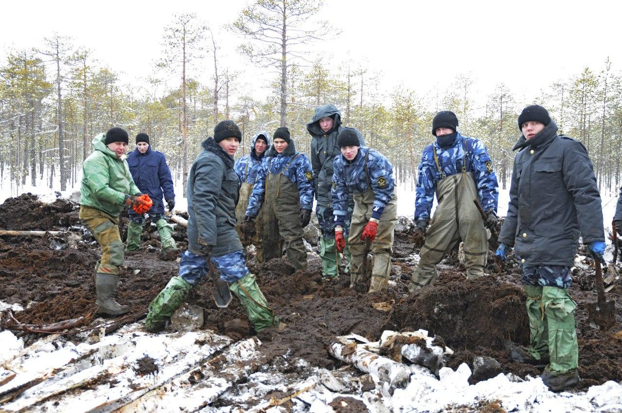 В Бабаевском районе поисковики подняли из болота тело погибшего летчика