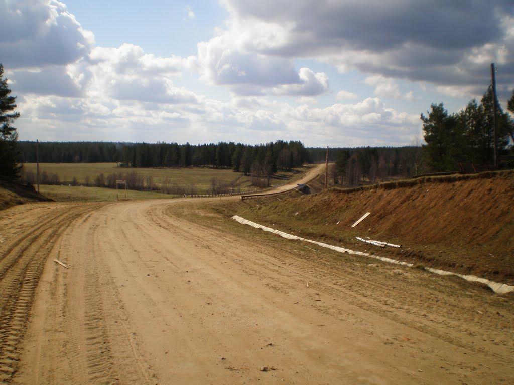 В Бабушкинском районе возить детей в школу через лес будет частник