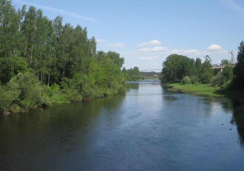По факту гибели мужчины и ребенка в реке в Бабаево проводится доследственная проверка