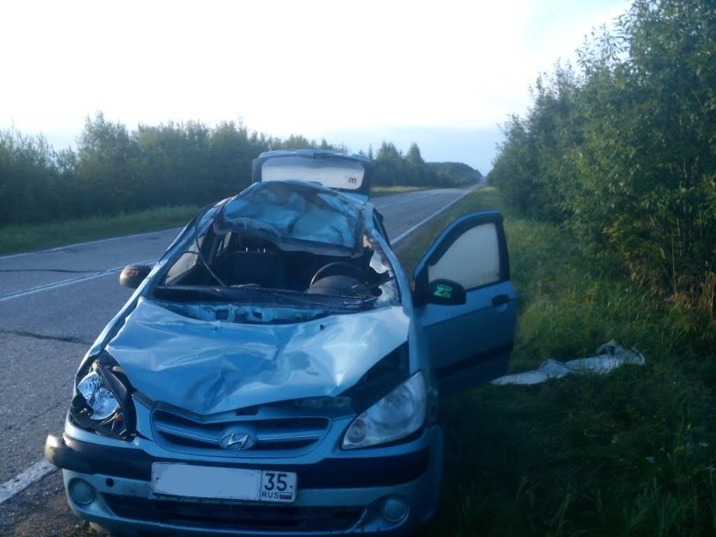В Череповецком районе иномарка сбила лося: водитель в больнице