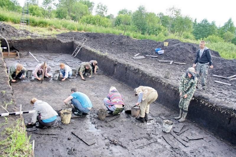Челюсть лося эпохи мезолита нашли в Кирилловском районе