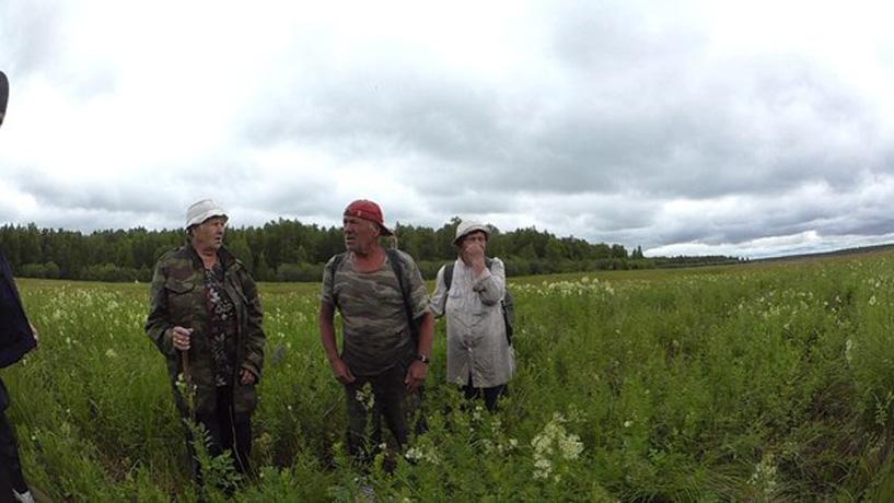 Трое пенсионеров заблудились в вологодском лесу: их вывели спасатели