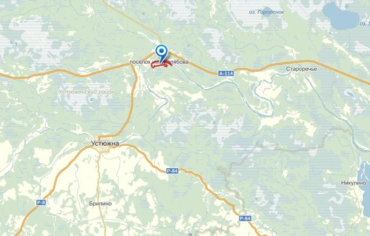 Пропавшего подростка нашли мертвым в Вологодской области