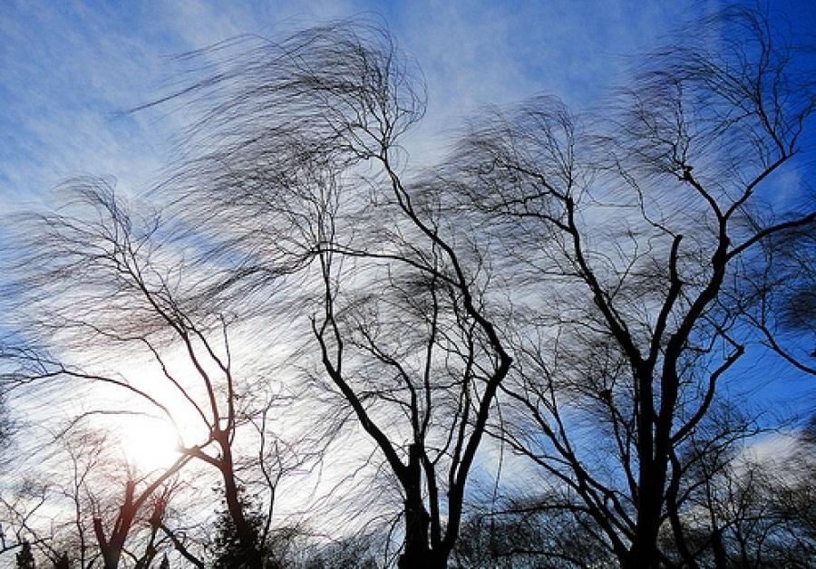 В Вологодской области объявлено штормовое предупреждение