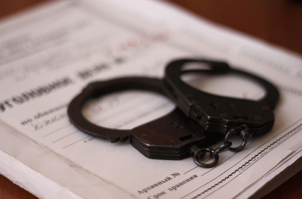 По факту убийства женщины и ребенка в Череповце возбуждено уголовное дело
