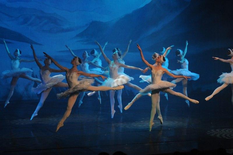 Юные череповчане станцуют «Лебединое озеро» вместе с артистами московского театра