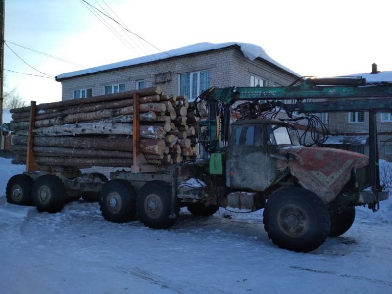 Под Сямжей полиция остановила грузовик с ворованным лесом, которым управлял водитель без прав