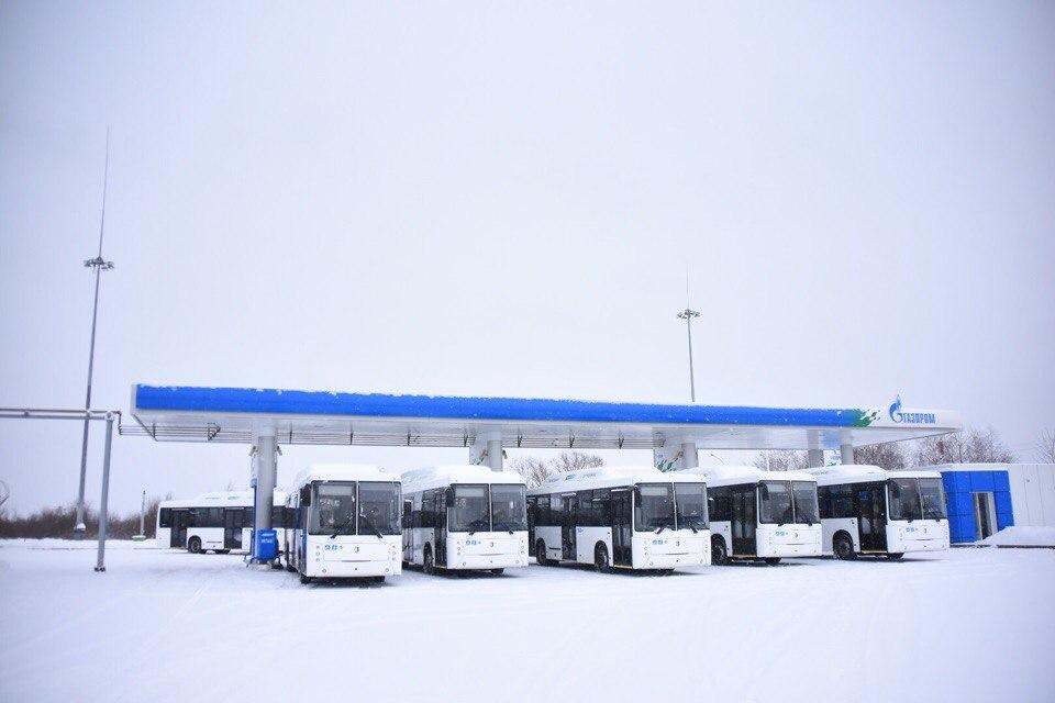 10 новых низкопольных автобусов будут ездить в Вологде по пяти маршрутам