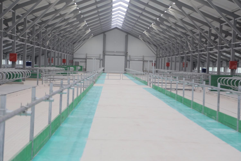 В Вологодском районе открыли современную животноводческую ферму на 800 коров