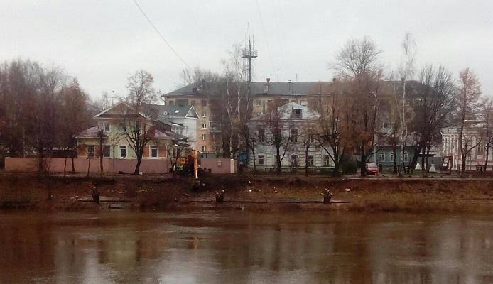 Сергей Воропанов: «Ивняк по всей Набережной надо бы вырубить»