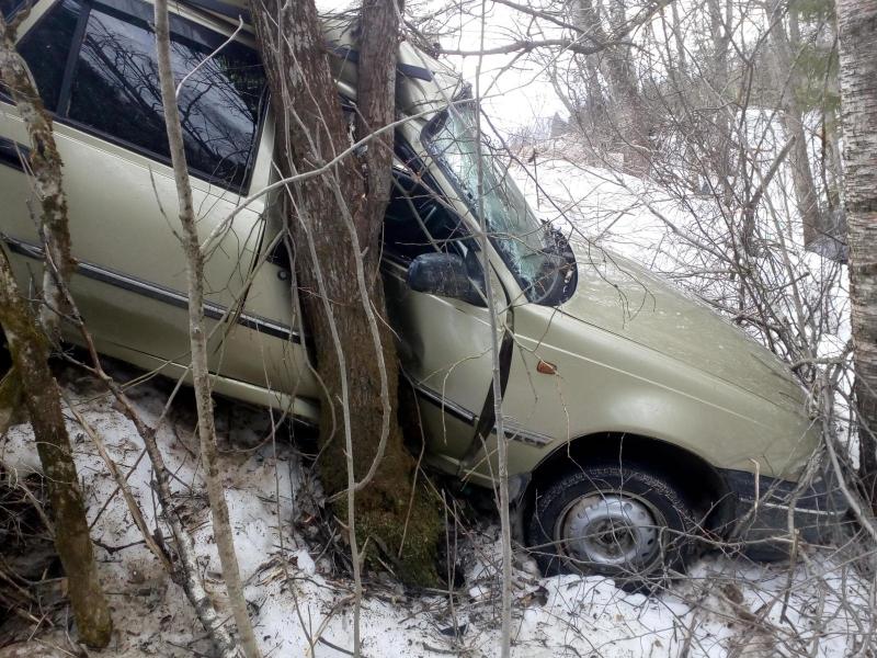 В Вытегорском районе «Дэу Нексия» вылетела в кювет и врезалась в дерево