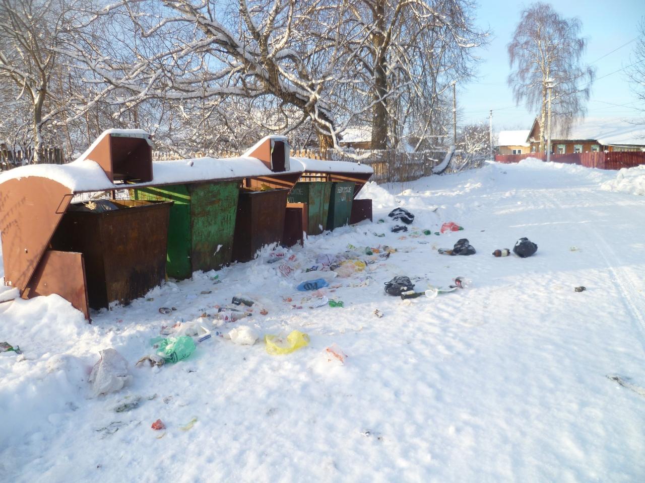 Год свиньи Вологодская область встретила заваленными мусором контейнерными площадками