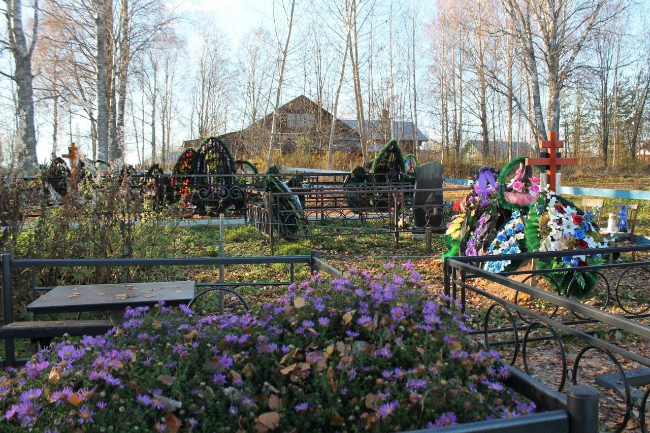 В селе Верховье Череповецкого района людям из-за халатности властей приходится жить практически на кладбище