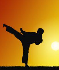 Вологодские каратисты завоевали более 20 медалей на международных соревнованиях