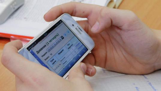 Как сделать отношение родителей к электронным дневникам стоит выезд