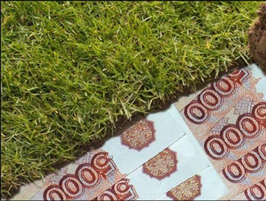 С 1 января многодетные семьи в Вологодской области смогут получать денежные выплаты вместо земельных участков