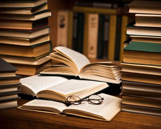 Исследователи из Китая, Румынии и Молдовы приехали на «Беловские чтения» в Вологду