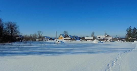 Жители деревни Арзубиха Харовского района получили отписку на просьбу спасти деревню