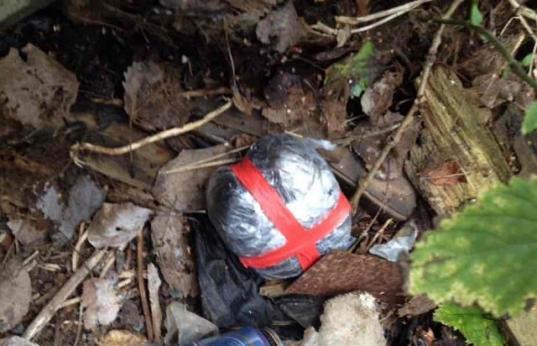 Полиция задержала череповчанина, который ночью искал в траве «закладку» с амфетамином